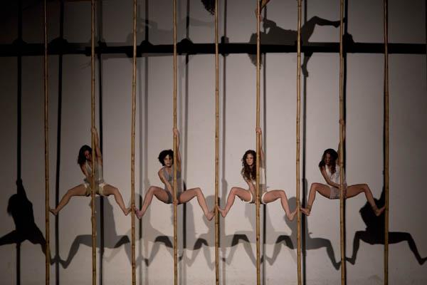 Teia (paralaxes do Imaginário) - Nós No Bambu