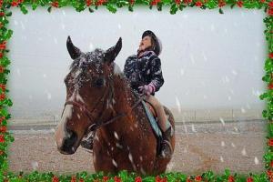 Christmas Horse Rider