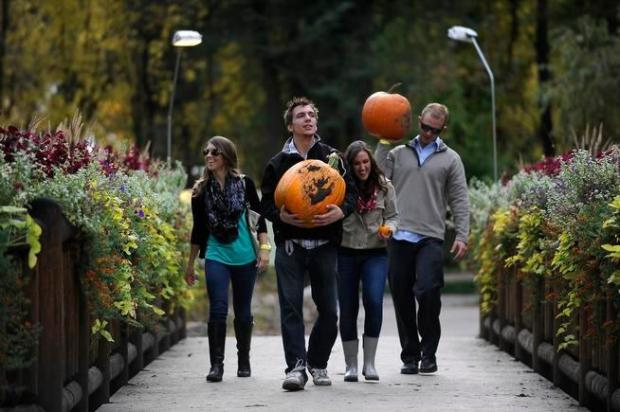 From left, Amanda Heberling, Matt Wagner, Sara Gardner, Justin Heberling carry pumpkins from the pumpkin patch as they leave the Denver Botanic Gardens at Chatfield on Oct. 10, 2015.
