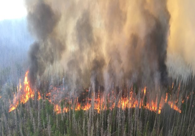 The Beaver Creek fire, as shown in this photo posted to the U.S. Forest Service's official Twitter account for the Medicine Bow-Routt National Forests and Thunder Basin National Grassland.