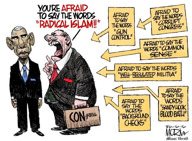 radical-islam-cartoon-morin