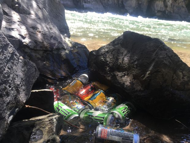 Beer cans being cooled in creek water.