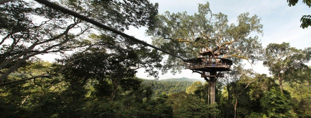 Riders can tear at 40 mph along 9.3 miles of ziplines at the Gibbon Experience in Laos. MUST CREDIT: Photo by Felipe Rodriguez Vasquez for The Washington Post.