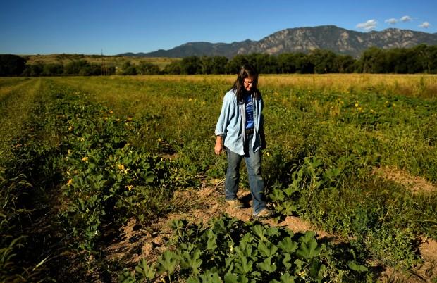 Susan Gordon Farm Manager at the Venetucci Farm