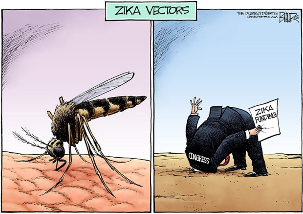 zika-funding-cartoon-beeler