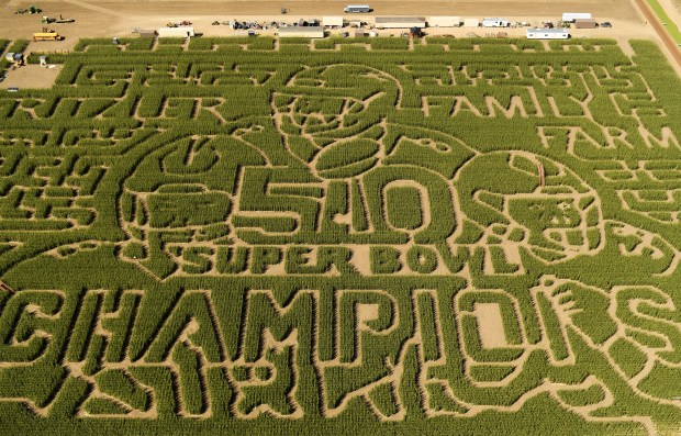 The Fritzler Corn Maze, in LaSalle Colorado, celebrates the Denver Broncos Super Bowl Champions September 14, 2016.