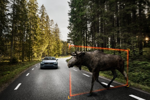2017 Volvo S90 can detect large animals and apply brakes.