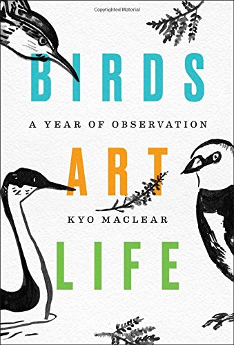 """Birds Art Life"" by Kyo Maclear"