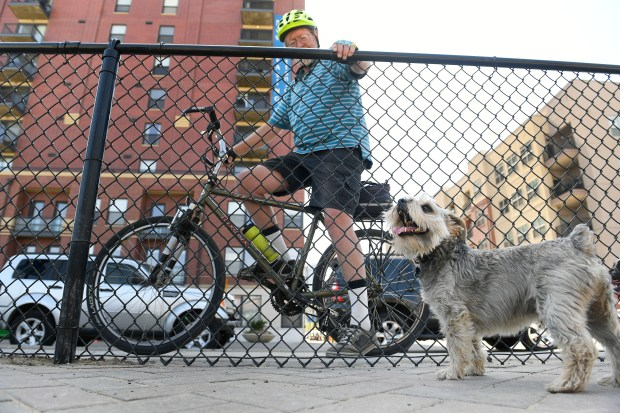 Stanley, a terrier, who doesn't like bikes, barks at Jeff Stanley while he pauses to check out dogs at the Railyard Dog Park on April 12, 2017 in Denver, Colorado. The Railyard Dog park is an off leash dog park near downtown Denver.