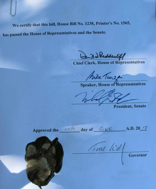 Pennsylvania's animal cruelty bill has the signature of Gov. Tom Wolf and even a paw print by Libre, a Boston terrier puppy who was emaciated and diseased when he was rescued last year by a delivery truck driver from an animal breeder in Lancaster County, Wednesday, June 28, 2017 in Harrisburg, Pa. (AP Photo/Marc Levy)