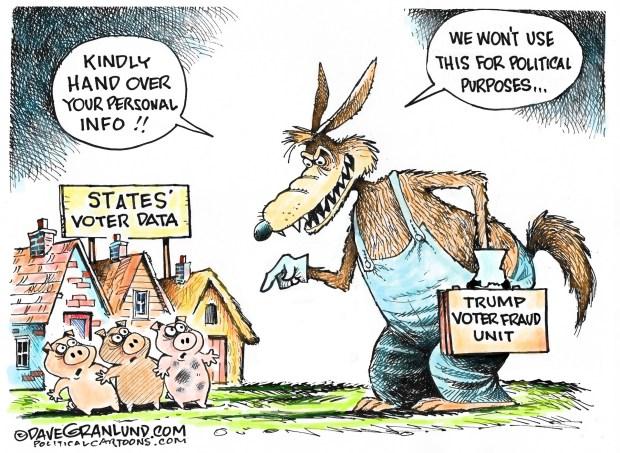 newsletter-2017-07-10-trump-voter-fraud-cartoon-granlund