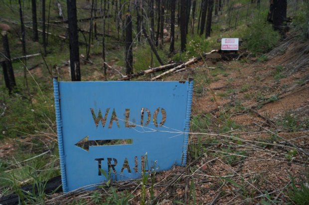 A sign for the Waldo Canyon trail stands before a sign warning people of trespassing. The trail has been closed since the 2012 wildfire, and the U.S. Forest Service has no plans to allow access in the canyon.