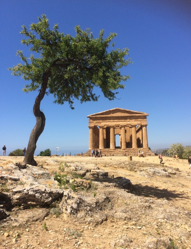 The Temple of Concordia in the Valley of the Temples, in Agrigento, Sicily, Italy. It's one of seven Greek temples in the area that date to ancient times and have been declared a UNESCO World Heritage site.