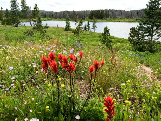 Dumont Lake Campground is near Rabbit Ears Pass — and quality hiking and mountain biking. (Joshua Berman, Special to The Denver Post)