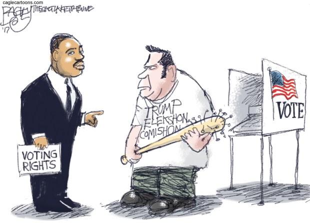 newsletter-2017-07-17-voter-fraud-cartoon-bagley