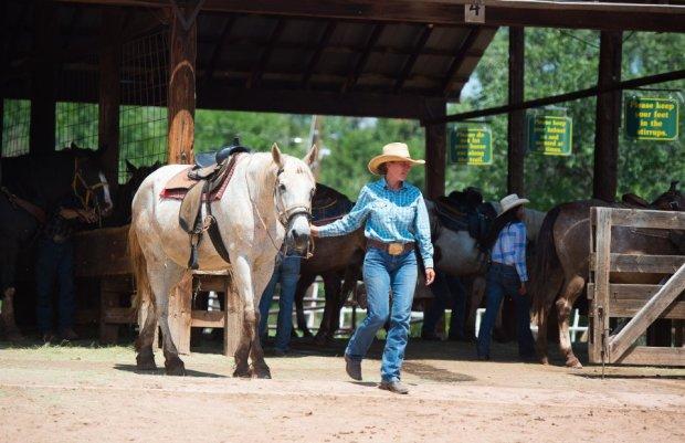 Academy Riding Stables closing, Garden of the Gods horseback rides ...