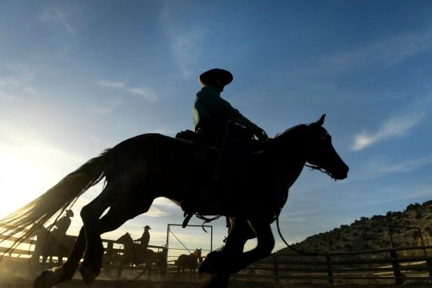 As the sun sets cowboys Justin ...