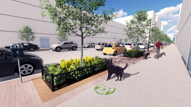 A concept design under consideration in the Union Station neighborhood would protect street trees by surrounding them with shrubs and fencing. A crushed-stone surface on the perimeter would be available for dogs to urinate.