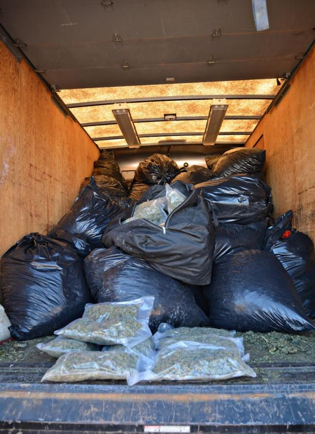 Bust uncovers 1,500 pounds of marijuana, worth estimated $4.5 million, in Montrose County