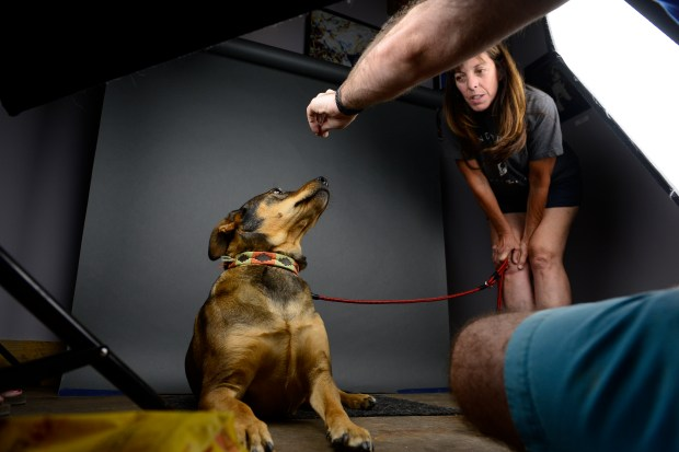 Pet portrait photographer Adam Goldberg takes personalized portraits of Maya, a reservation dog,