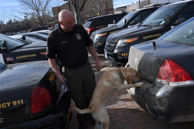 Vince Petkosek, with the Pueblo Police Department K-9 Unit, demonstrates the skills that Sage