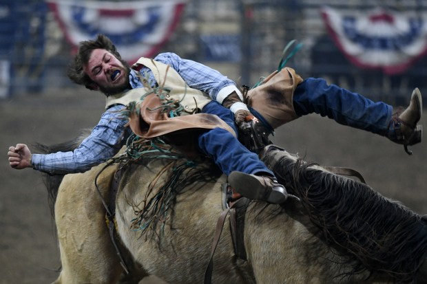 Sensory friendly rodeo entertains families, classes at National Western Stock Show