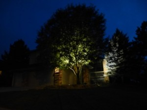 Home in Highlands Ranch with low voltage night scape lights