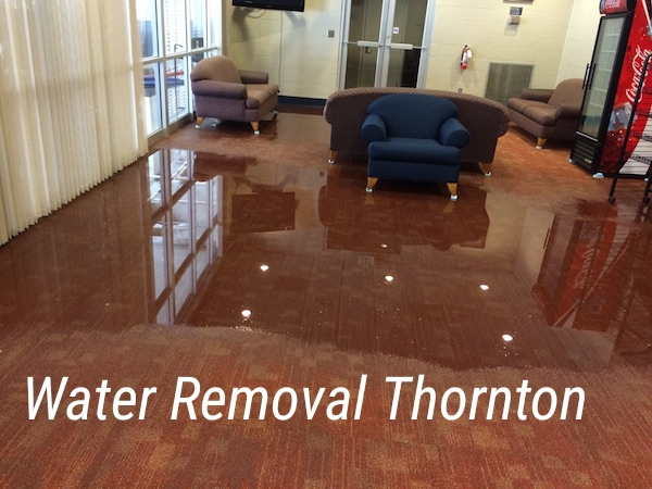 Water Removal Thornton