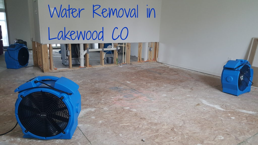 Water Removal in Lakewood CO
