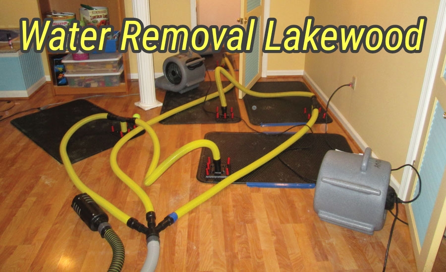 Water Removal Lakewood