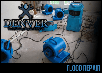 flood repair 2