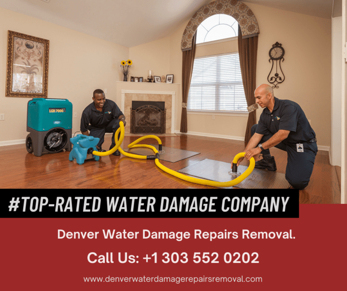 Top-Rated Water Damage Company in Denver.
