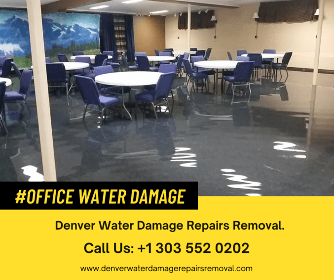 What company is best for Office Water Damage in Denver