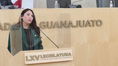 Photo of El Partido Verde propone despenalizar el aborto