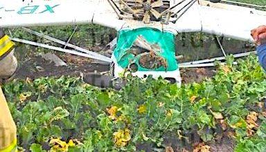 Photo of Se desploma una avioneta en San Luis de la Paz