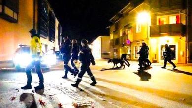 Photo of Un 'arquero' mata a cinco personas en Noruega