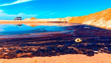 Photo of Marea negra en California