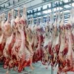 Nova lei evita indicação política para chefe de fiscalização de frigorífico