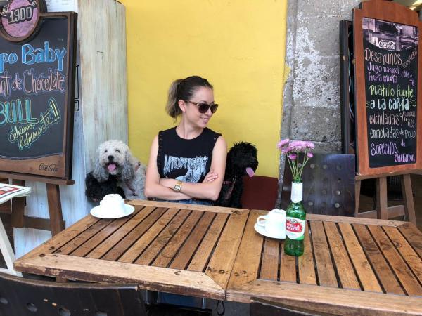 Restaurantes pet friendly en CDMX