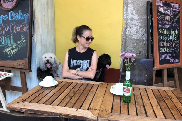 Restaurantes pet friendly en CDMX