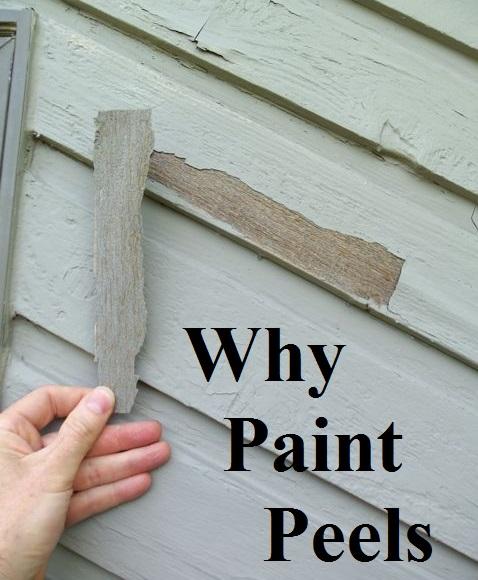 Why Paint Peels