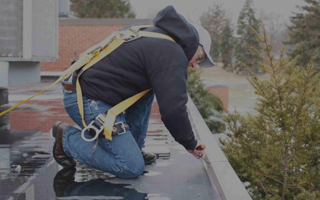 Roof Asset Management Team