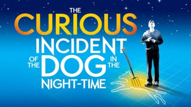 book, books, review, reviews, book review, the curious incident of the dog in the night-time, depepi, depepi.com