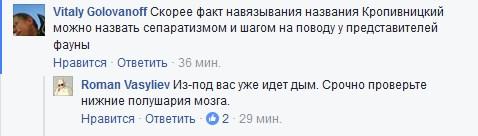 """Для чого у Кропивницькому прокинулися """"єлисаветградці"""" і влаштували сходку  - фото 8"""