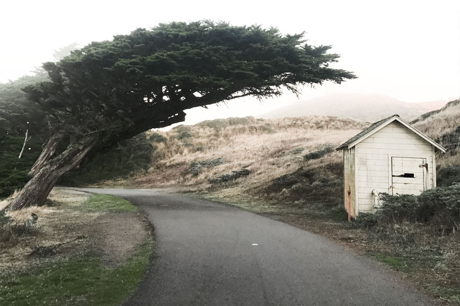 point-reyes-house