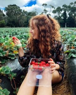 bruna-vieira-Sunny Ridge Strawberries