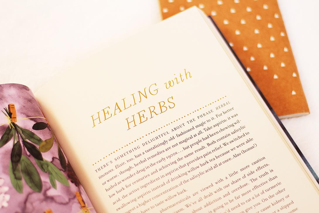 practical-magic-livro-book-review-resenha-5