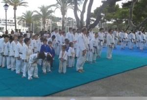 Campus de verano de judo infantil, se llevó a cabo en las instalaciones del Renshinkan y este año hay unos 80 inscritos. Se hace mañana y tarde en las respectivas localidades de Manacor, Son Servera y Cala Ratjada (Capdepera).