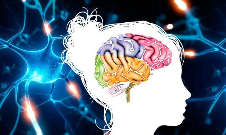 aplicaciones para entrenar tu cerebro