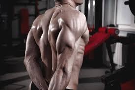 ejercicios con peso corporal para tríceps